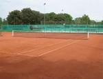 Tennisblenden - Standardformat 12 x 2 m